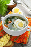 Nettle soup with egg Royalty Free Stock Photography