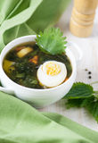 Nettle soup Stock Images
