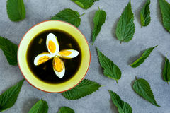 Nettle soup Royalty Free Stock Images