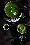 Nettle soup with Wild Garlic Oil royalty free stock photo