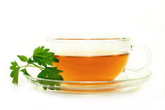 Nettle tea. A cup of nettle tea with fresh nettles on a white background stock images