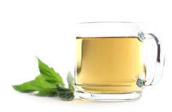 Nettle tea. Nettle and freshly made nettle tea in a glass cup on white background. Shallow dof stock images
