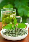 Nettle tea. Nettle and freshly made nettle tea in glass cup Royalty Free Stock Photos