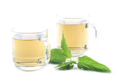 Nettle tea Royalty Free Stock Photo