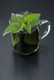 Nettle Tea Stock Image