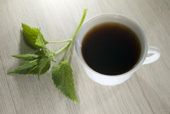 Nettle tea in a cup Stock Image