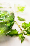 Nettle tea in glass teapot and fresh leaves Royalty Free Stock Photography