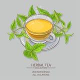 Nettle tea illustration Royalty Free Stock Photos