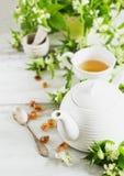 Nettle tea stock image
