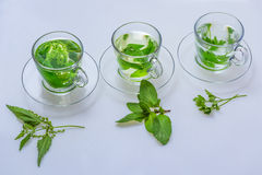 Nettle Tea @ the mint tea @ tea, parsley. Herbal teas for health from nature stock images