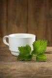Nettle Tea royalty free stock image