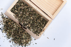 Nettle tea in a wooden box retro Stock Photography