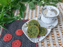 Nettles green cookies. On plate, cooking with wild plants stock photo