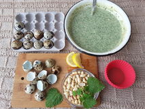 Nettles muffins cooking with quail eggs. Nettles muffins, cooking vegetarian food with nettles, lemon and quail eggs stock images