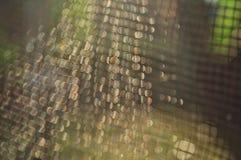 Netto patroon onder zonlicht voor behang of achtergrond stock fotografie