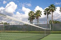Netto tennisbaan en palmen Stock Foto