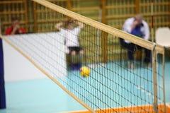 Netto volleyballspeler en volleyball stock foto
