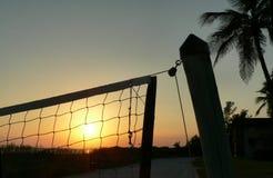 netto volleyboll Arkivbilder