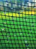 Nettomuster mit Tautropfen stockbilder