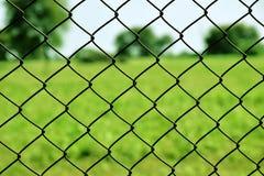 Nettoverbundwand des Gartens lizenzfreies stockbild
