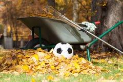 Nettoyage automnal de jardin Photographie stock