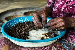 Nettoyage de café dans le village traditionnel de Bena Photos stock
