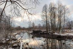 Nettoyage de la rivière de Malashka Photo libre de droits