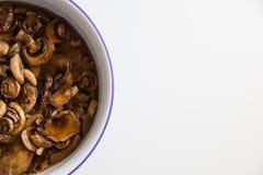 Nettoyage de quelques champignons pour le déjeuner Images stock