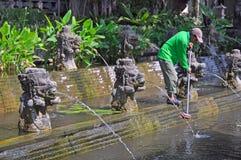 Nettoyage des étangs de Lilly, Bali Indonésie Photos libres de droits