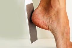 Nettoyage des pieds du champignon photographie stock libre de droits