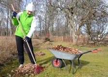 Nettoyage tôt de jardin de source Image stock