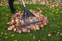 Nettoyer la cour pendant l'automne Image libre de droits