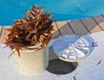 Nettoyeur de panier de piscine Images libres de droits