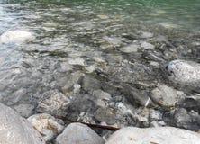 Nettoyez l'eau de rivière Images libres de droits