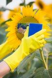 Nettoyez l'environnement Photo stock