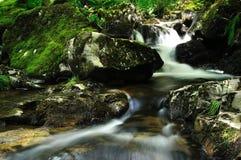 Nettoyez la cascade à écriture ligne par ligne en nature écossaise sauvage Photo stock