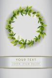 Nettoyez la mise en page avec les feuilles vertes Image libre de droits