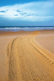 Nettoyez la plage Image stock