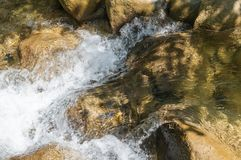 Nettoyez la rivière de montagne Photos libres de droits