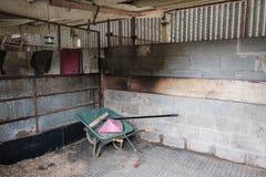 Nettoyez le bloc stable après avoir été curé, en montrant une partie de l'équipement de nettoyage image libre de droits