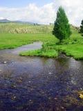 Nettoyez le fleuve image libre de droits