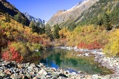 Nettoyez le lac de montagne parmi des arbres et des roches de Caucase Photos stock