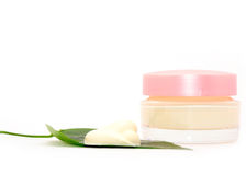 Nettoyez le massage facial crème Photographie stock