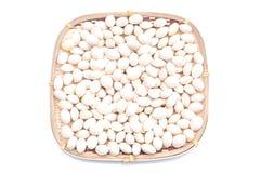 Nettoyez les graines de ginkgo dans le panier en bambou Image libre de droits