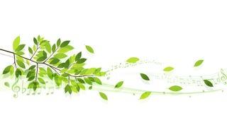 Nettoyez les illustrations vertes fraîches de fond Image libre de droits