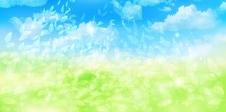 Nettoyez les illustrations vertes fraîches de fond Photos libres de droits