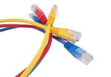Netwerk Ethernet Cabl Stock Afbeeldingen