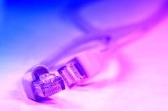 Netwerk rj45 plugin stock fotografie