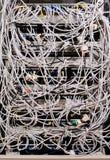 Netwerk UTP Royalty-vrije Stock Afbeeldingen