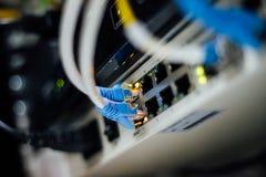 Netwerkkabels in een centrum dat van technologiegegevens worden verbonden royalty-vrije stock foto's